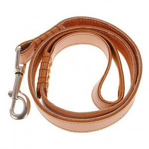 Double Padded Leather Collar