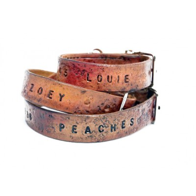 BridleLeather Dog Collar