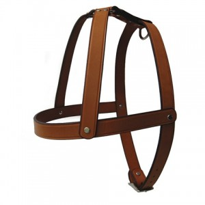 Leather Cross Harness