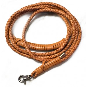 Quick Brown Leather Leash