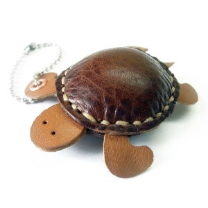 Crazy Turtle Toy